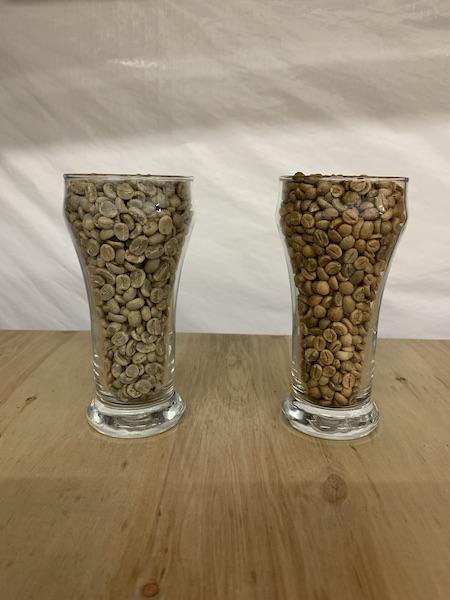 Arabica (left) vs Robusta (right) Beans
